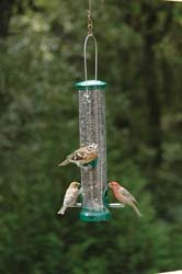 Wild Birds Unlimited Quick-Clean Seed Tube